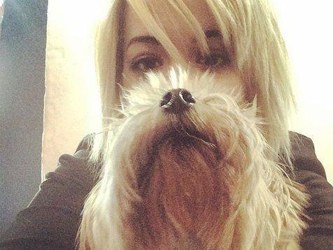 Mischung aus Hund und Girl